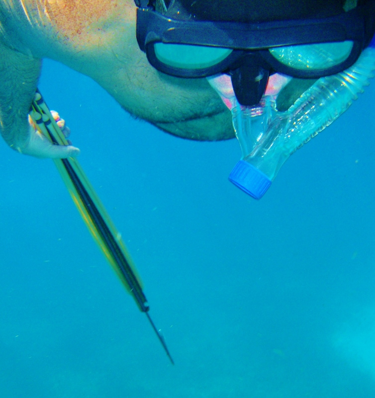Don Spearfishing