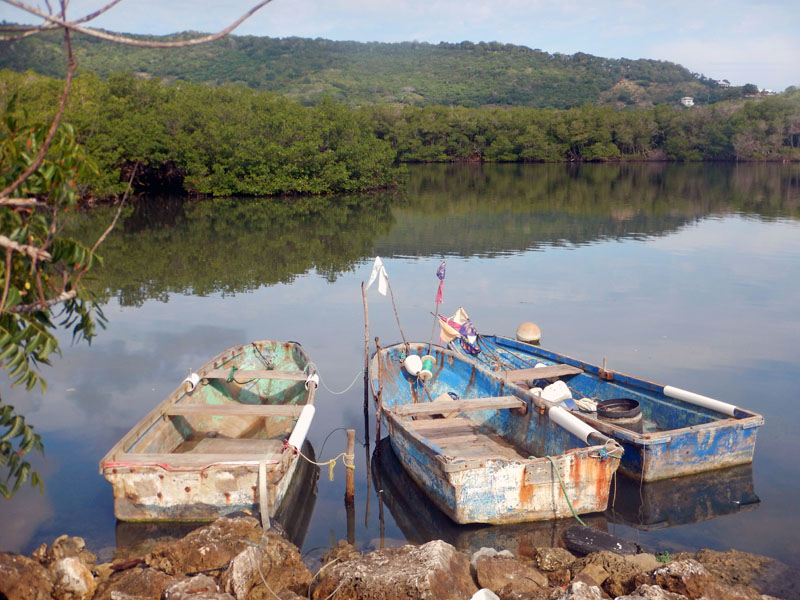 Fishing Boats of Luperon, DR